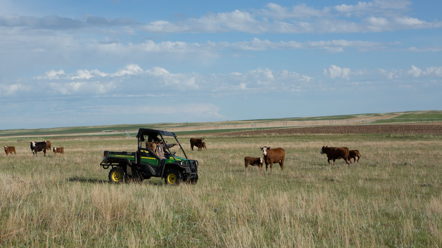 Wyoming Ranching Family, the Lerwick Family
